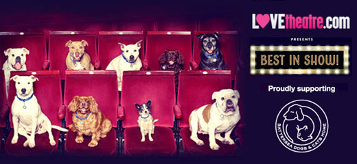 LOVEtheatre donates booking fees on select shows to Battersea Dogs & Cats Home